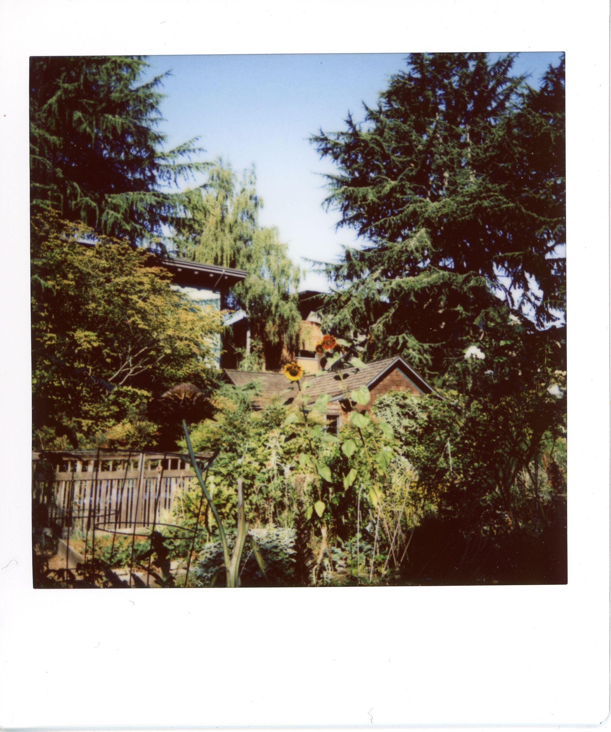 Captiol Hill Seattle
