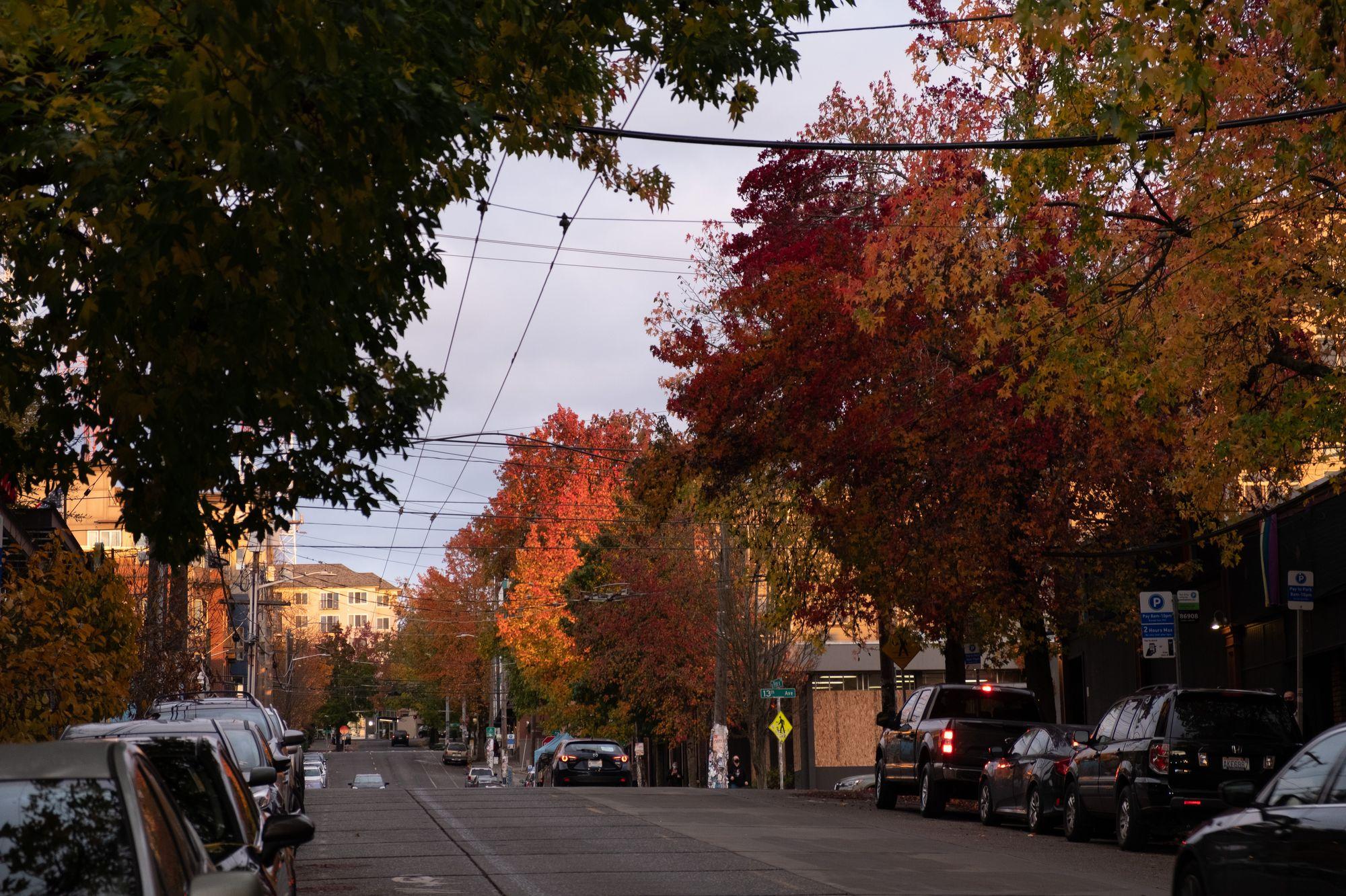 Capitol Hill Seattle November 2020
