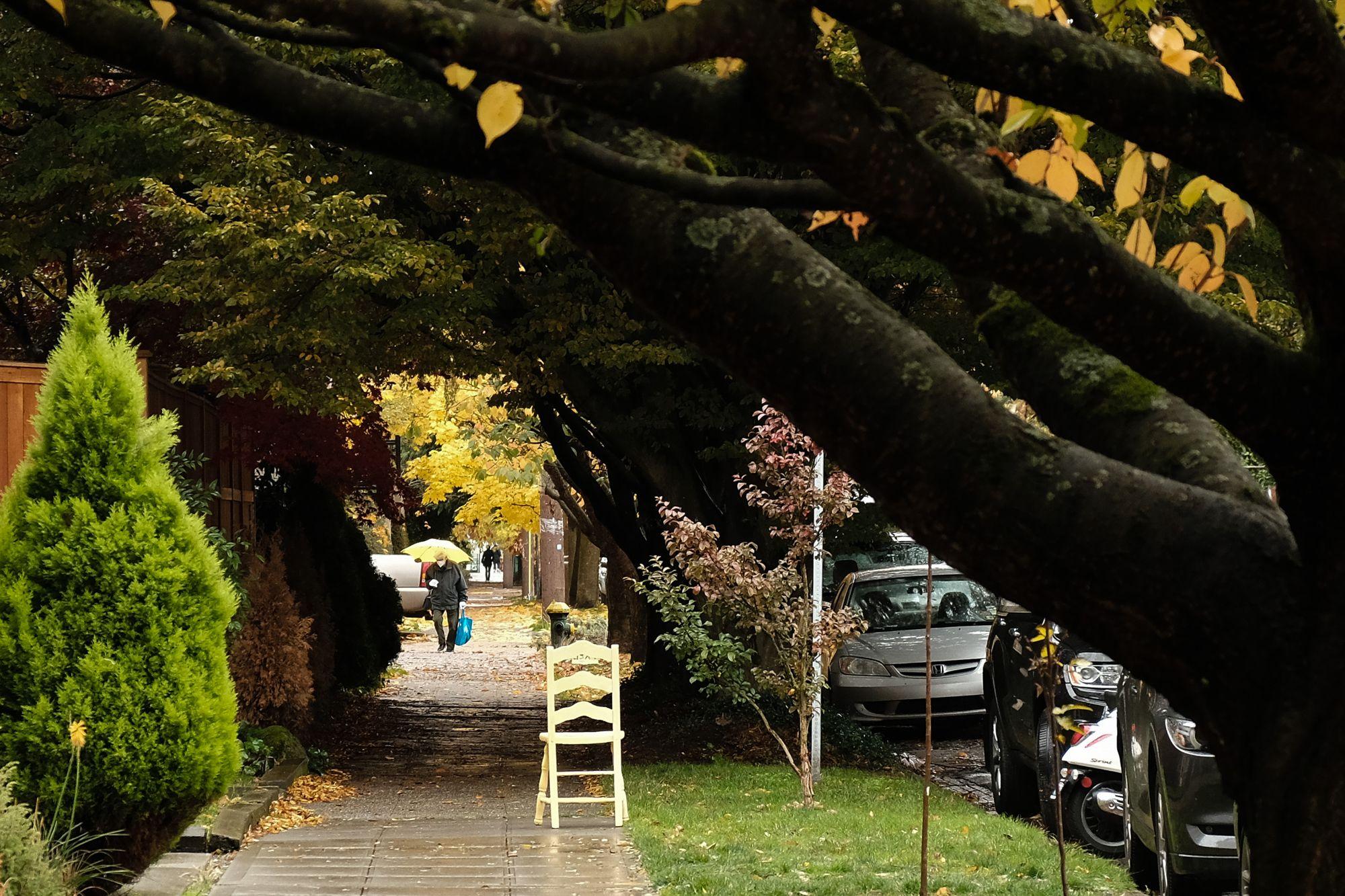 Capitol Hill, Seattle, November 2020.