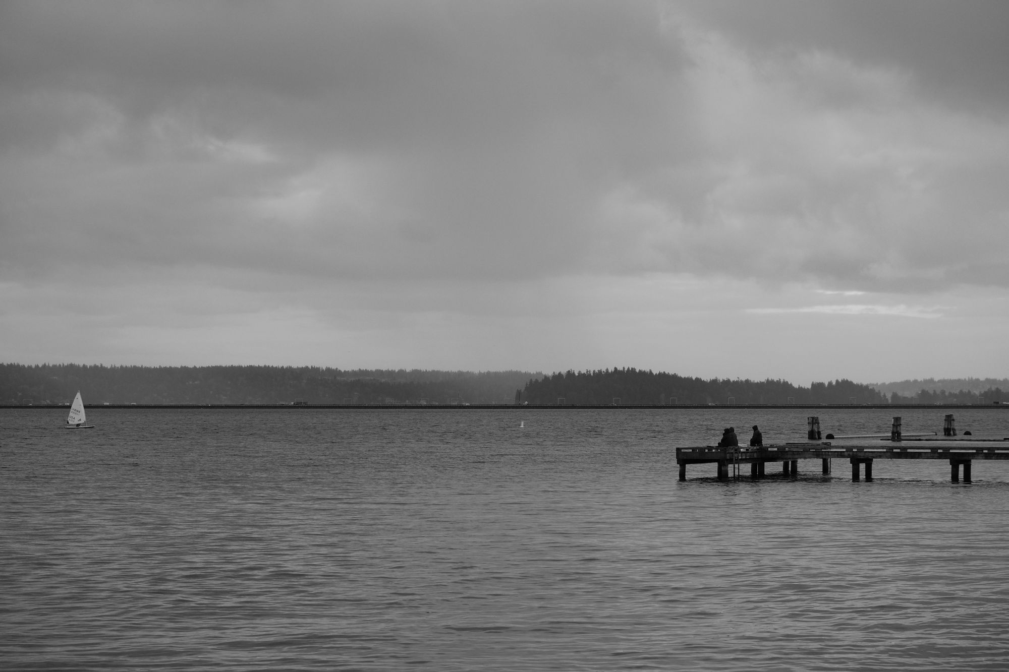 Waterfront Madrona Park Seattle December 2020