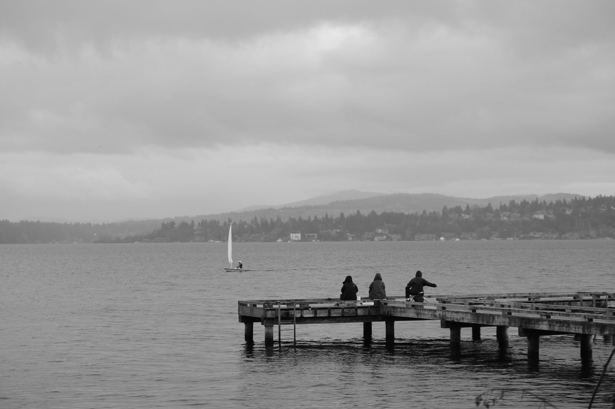 Waterfront Madrona Park Seattle